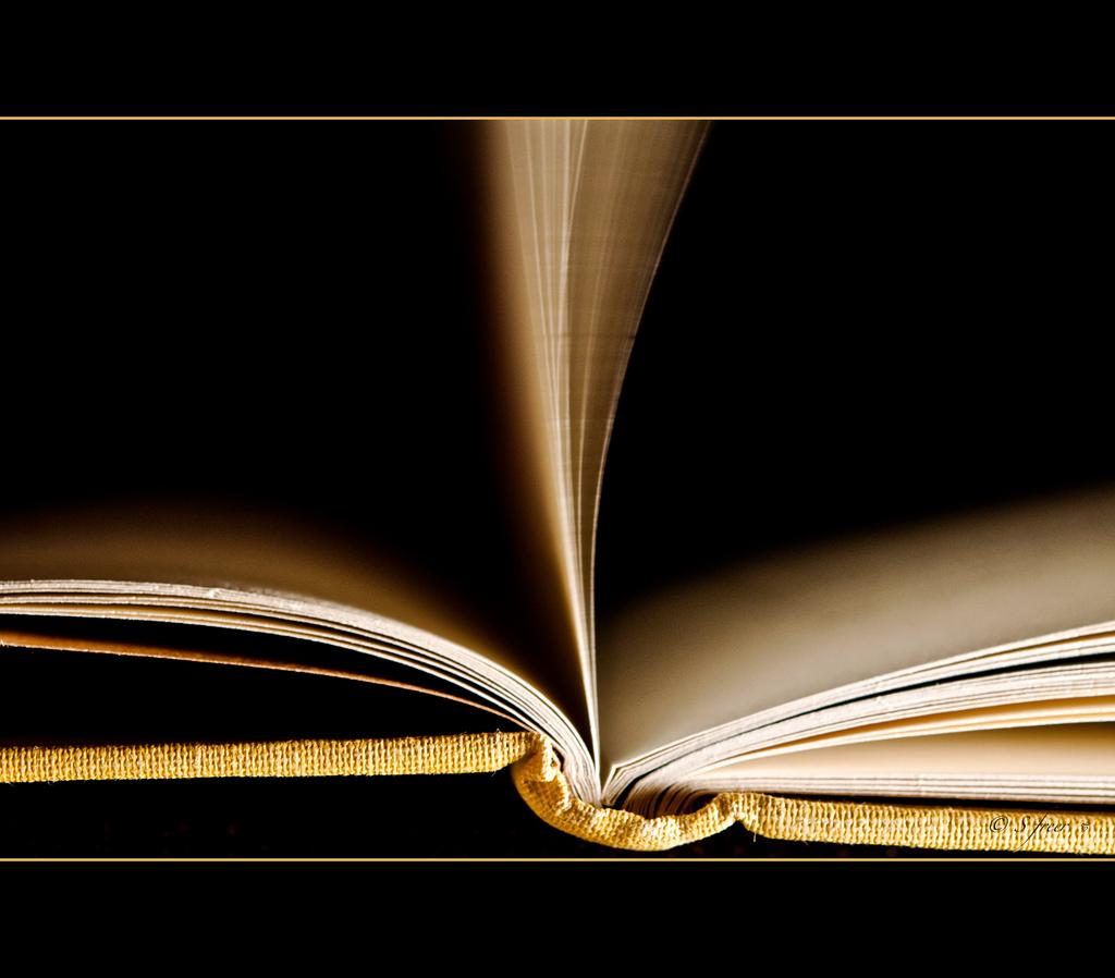 Artigo 246 – Virar a página é preciso
