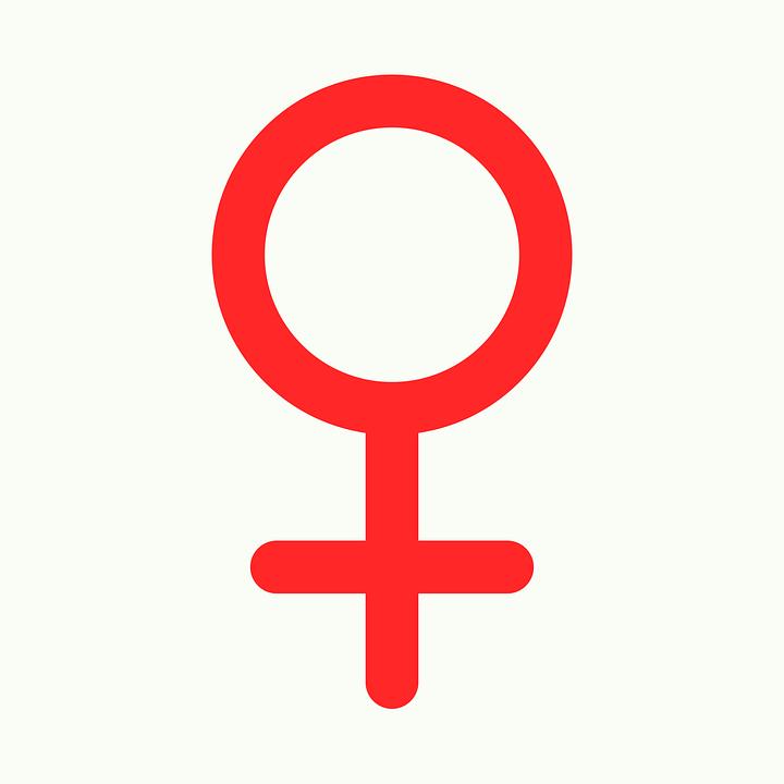 Artigo 354 – Mulheres no comando