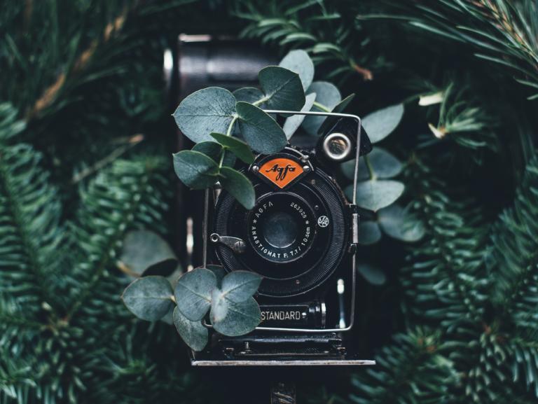 Artigo 424 – O tempo e as câmeras